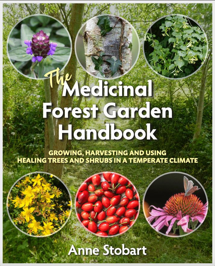 Medicinal Forest Garden Handbook Frontcover