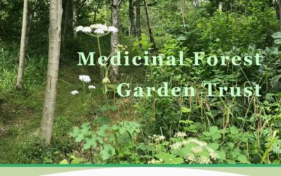 New Medicinal Forest Garden Trust website